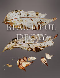 Beautiful Decay by BrookeGillette