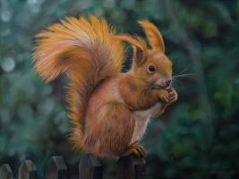 Squirrel - Pastel Pencil Drawing by lluvia-estival