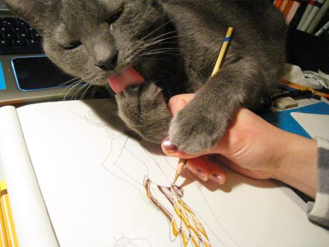 My cat teaches my how to draw by Shanna83