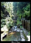 Ithaca is Gorges by powdernine