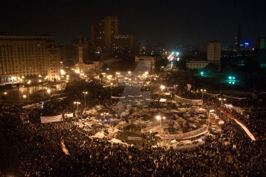 The Egyptian Revolution by Moesherif