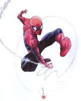 SPIDEY SWINGS by deemonproductions
