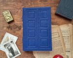 River Song's Diary - 2016 by MilleCuirs