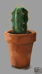 Cactus study by SpicAlyce