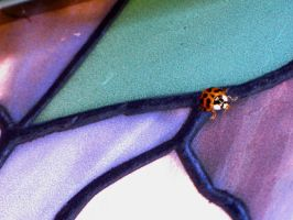 ladybug upon stained glass by DisneyPrincessNeeNee