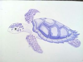 Purple Turtle by DwimmerCrafter