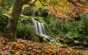 Autumn Waterfall by EmMelody