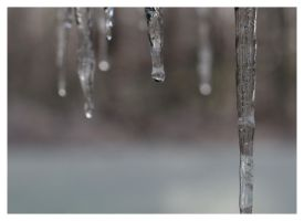 Icicles by morestarinatthestars