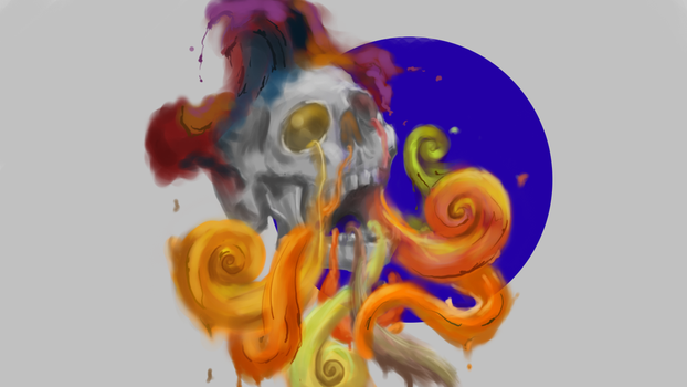 The Beauty of Skull by McDash