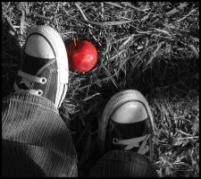 Red Apple by Pascalou