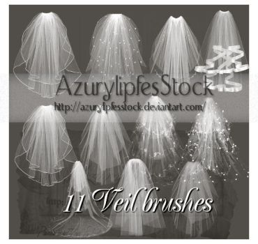 veil brushes psp 9 by AzurylipfesStock