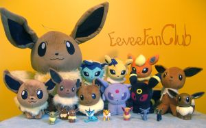Eevee Family Photo +Collection
