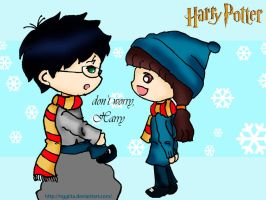 harry and hermione by nggiita