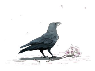 HANAMI- Crow and Cherry blossom by guntama