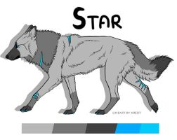 Star Reference - Fursona [2016] by StarCanid