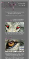 Eye Tutorial by gothams--reckoning