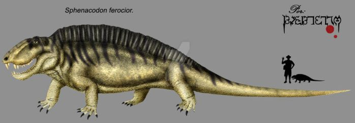 Sphenacodon ferocior by Theropsida