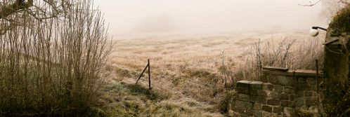 Foggy morning. by MbOscarsson