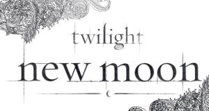 Twilight and New Moon Brush by tiffcali06