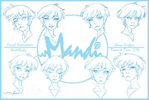 Mandi Expressions by SURFACEART