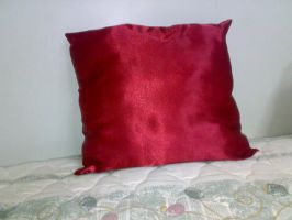 Red Pillow 2 by Stars-Sudio