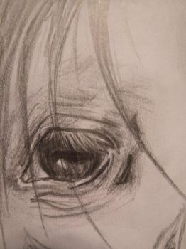Horse Eye- close up by carampark