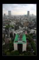 Tokyo from the tower by stevezpj