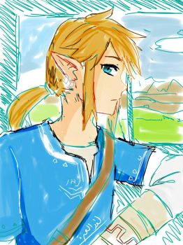 Linkwiiu by ichi-iltea15