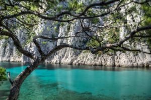 Small paradise by Toinant