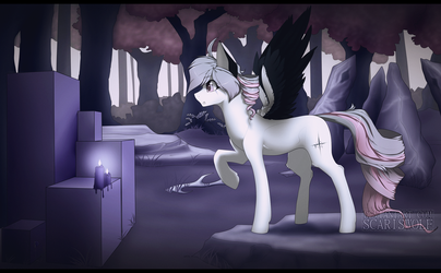violets everywhere by ScarisWolf