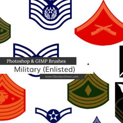 US Military Ranks II Photoshop and GIMP Brushes by redheadstock
