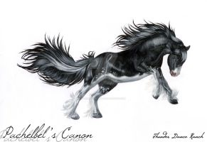 HARPG: Pachelbel's Canon by FearlessFilly