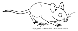 Free-use Mouse template by pinemartenartin