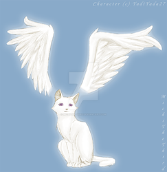 ::Angel:: by MichiTheThird