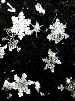 Snowflakes 3 by TheBurningWitch
