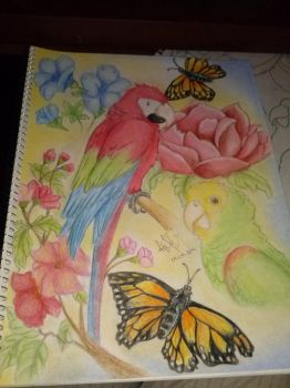 Parrot And Flowers Collage - Pastels by Andrea--P