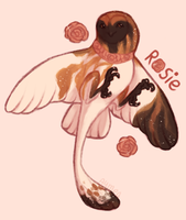 Rosie by Aymea