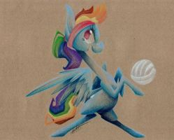 Summertime Rainbow Dash by getchanoodlewet