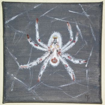Spider by MichaFire