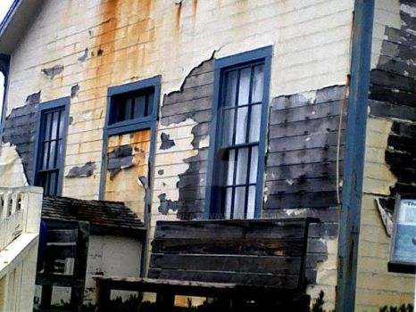 Shack at Pigeon Point California by Wyvanna
