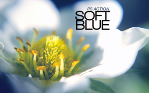 Soft Blue PS ACTION by Papageienfreak