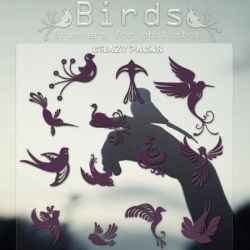 Birds |BRUSHERS| by CrazyPacks