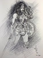 Ballpoint Wonder Woman by DrewEdwardJohnson