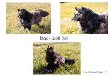 Black Wolf Doll by MiiruFae