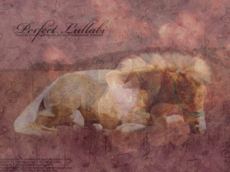 Perfect Lullabi by stonetempleangel