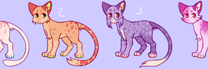 cat design auction by pawpplio