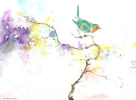 Robin on a branch by emalterre