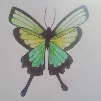 Green Butterfly by Stephie212202