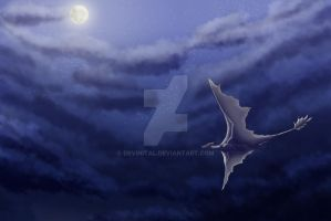 Night Flight by Devinital