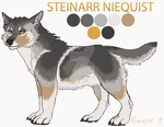 Steinarr Niequist - Reference Concept by Rehensin